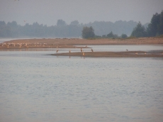 Głębinów 14 sierpnia 2007r