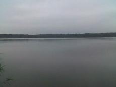 Lubiąż