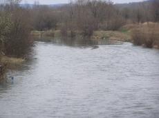 Zdjęcie nysy Kłodzkiej - kraina lipienia - wiosna 2007r.